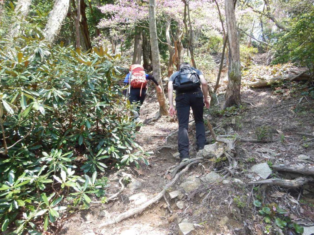 釈迦岳に至る道