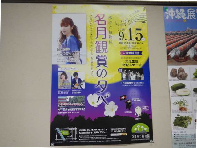 名月鑑賞の夕べポスター