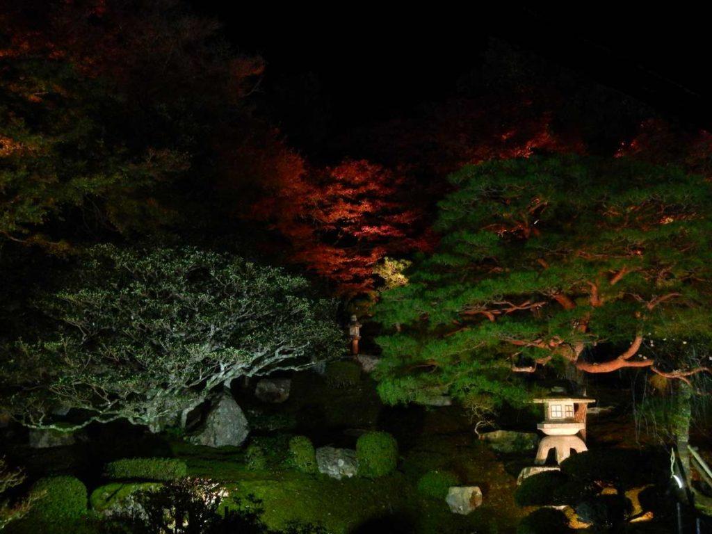 竹林院ライトアップ