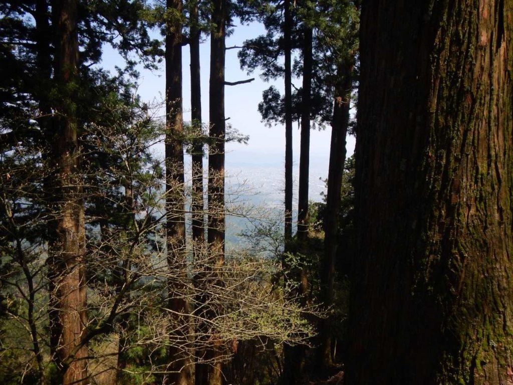 愛宕山からの展望