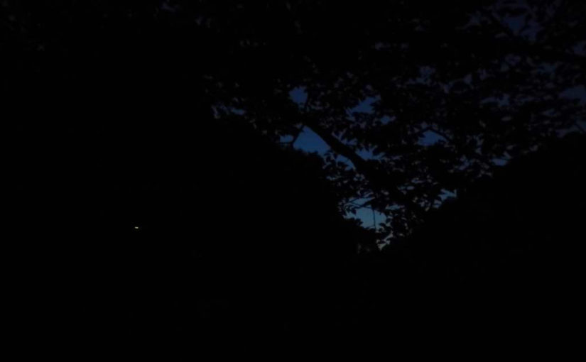 暗闇とホタル