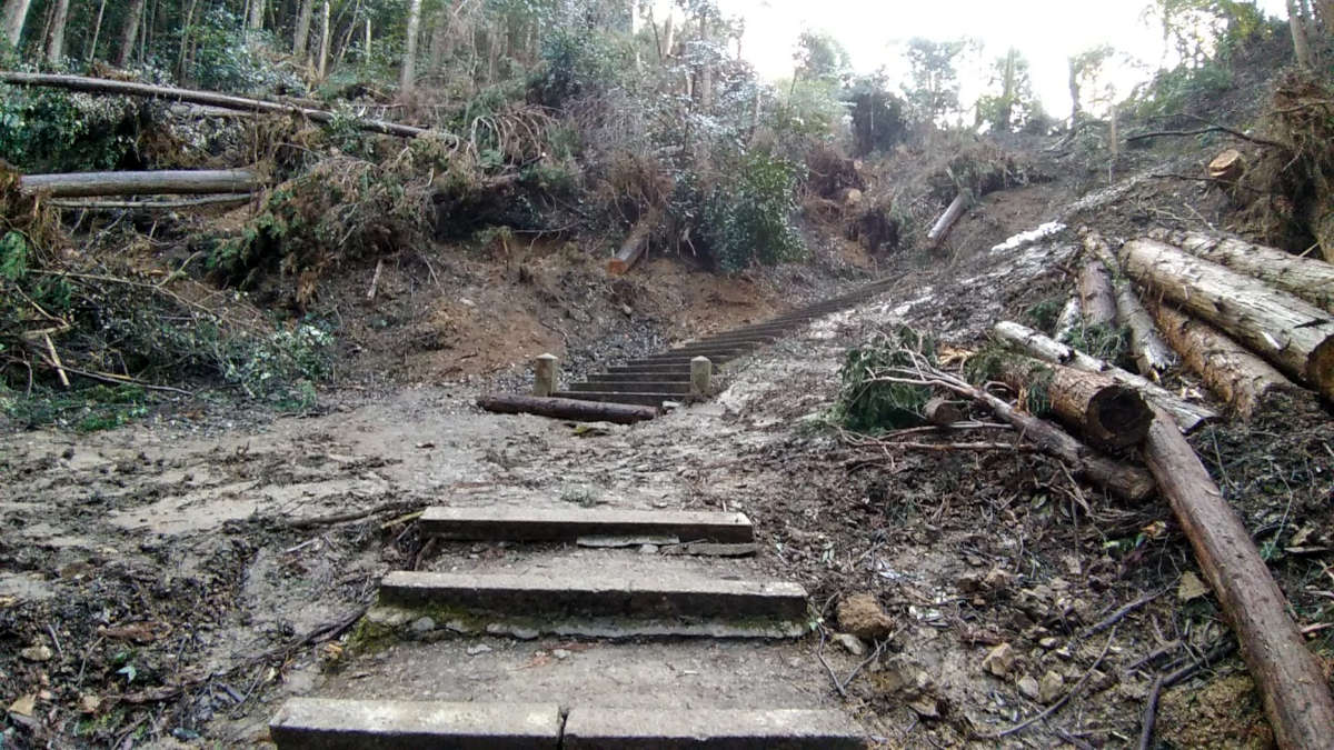 荒れた山道