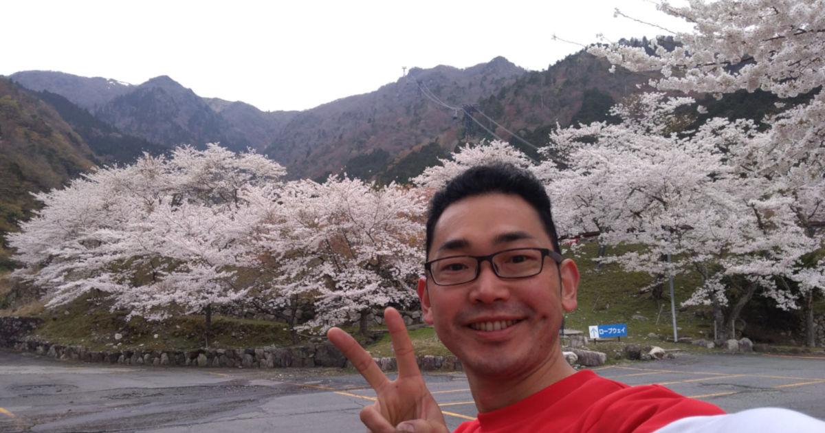 琵琶湖バレイの桜とwishigrow