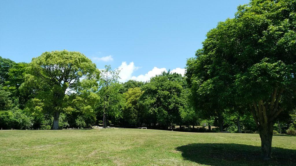 皇子が丘公園