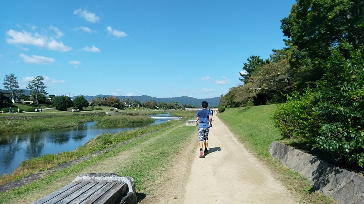 賀茂川沿いマラソン